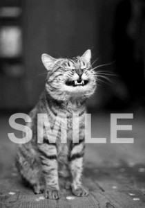 smile_kitty